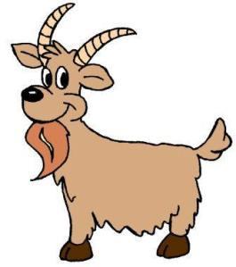 Goat - Cartoon 1